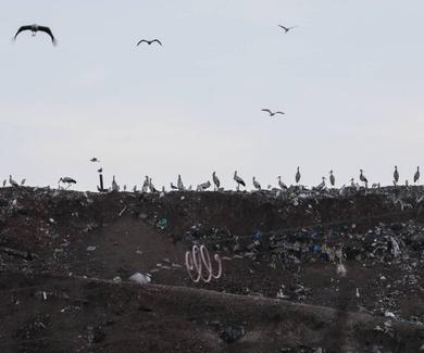 La Mancomunidad del Este plantea fabricar una instalación exprés para separar su basura.