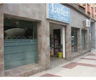 LEO TINTADO DE LUNAS: tintar lunas de Tintado de Lunas Asturias