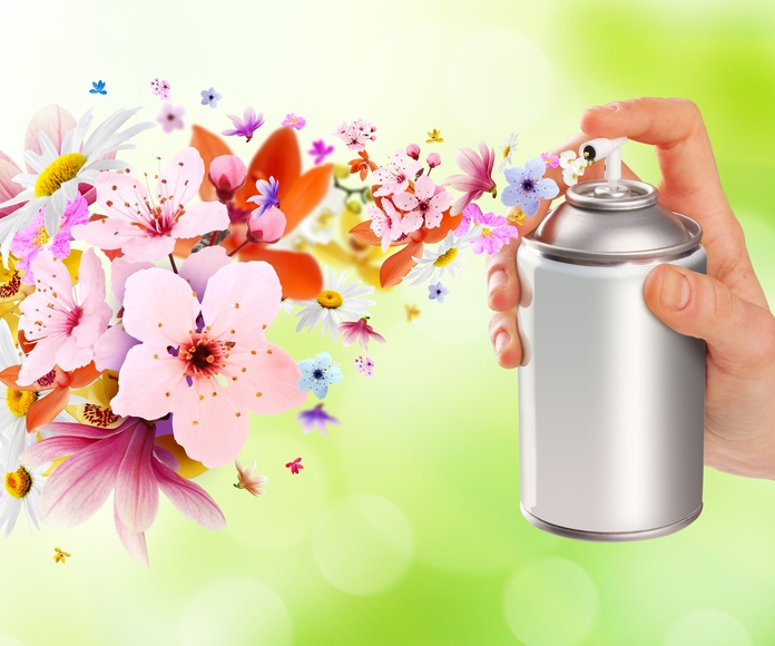 Tratamiento contra olores: Limpiezas de Limpiezas J & J