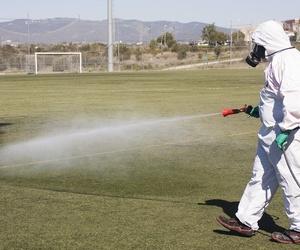 Tratamiento contra mosquitos en Tarragona
