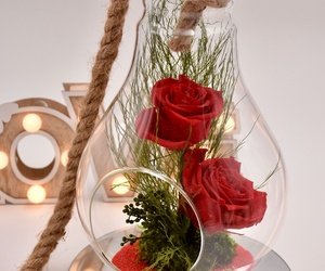 Bombilla con cuerda y rosas liofilizadas