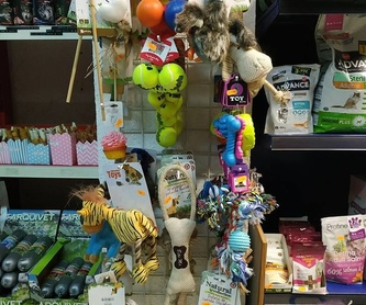 Peluquería canina: Servicios de Lobito's Peluquería Canina