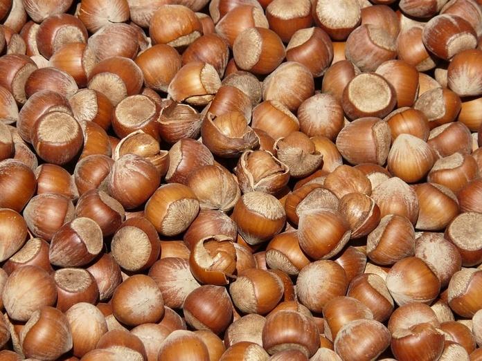 Avellanas con cáscara: Productos de Mundifruit