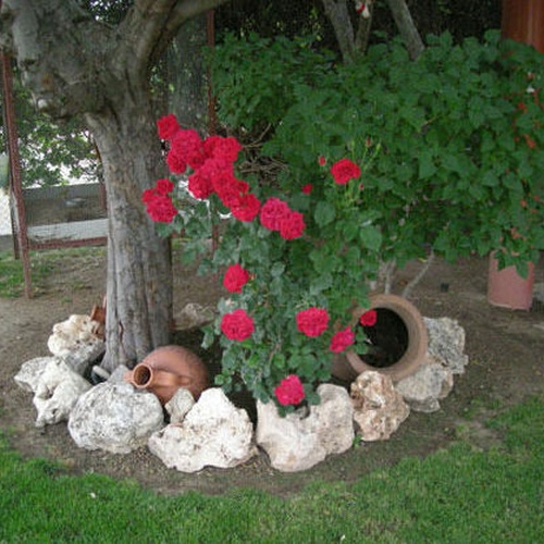 Decora tu jardín
