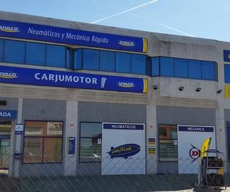 Vehículos eléctricos e híbridos: Servicios de Carjumotor
