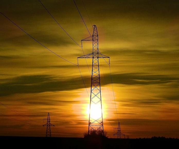 Podas bajo líneas eléctricas: Servicios de Cofoso