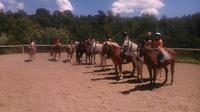 Clases de equitación para todas las edades y niveles!!!
