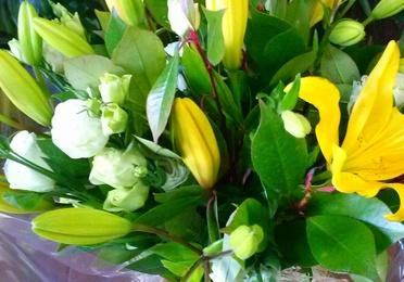 Bouquet variado.