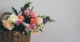 Regala flores en primavera