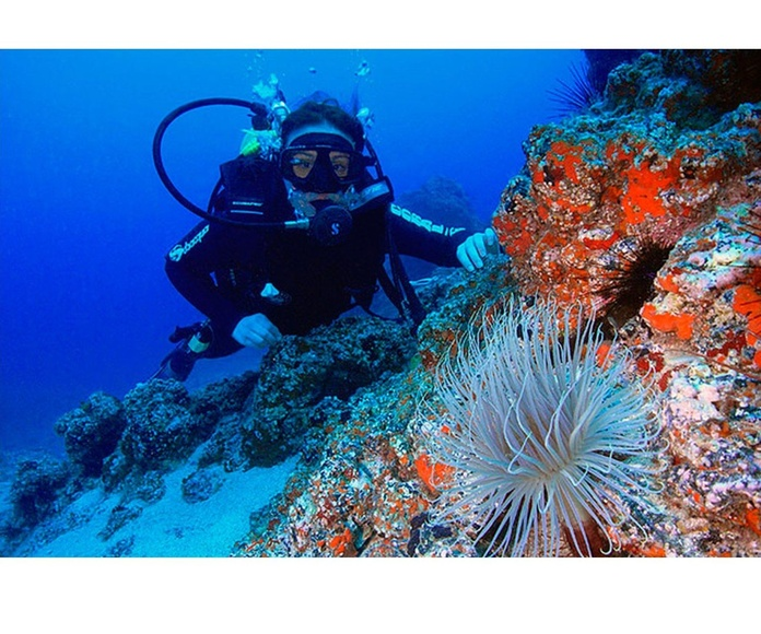 Buceo y submarinismo: Reconocimientos y servicios de Vázquez Parras Centro de Reconocimientos