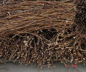 Todos los productos y servicios de Carbones y leña: Llenya Can Forns