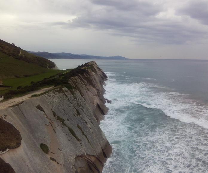 Flysh de Zumaia (acantilados)