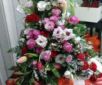 Plantas Naturales: Servicios de Artemisa Flores