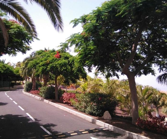 Servicios de Mantenimiento de Jardines y Zonas verdes : Productos y Servicios de Islas Jardín, S.L.