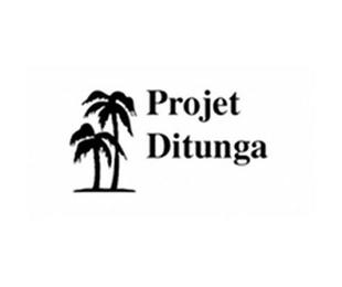 Proyecto Ditunga 2020