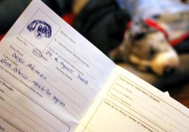Documentos y certificados