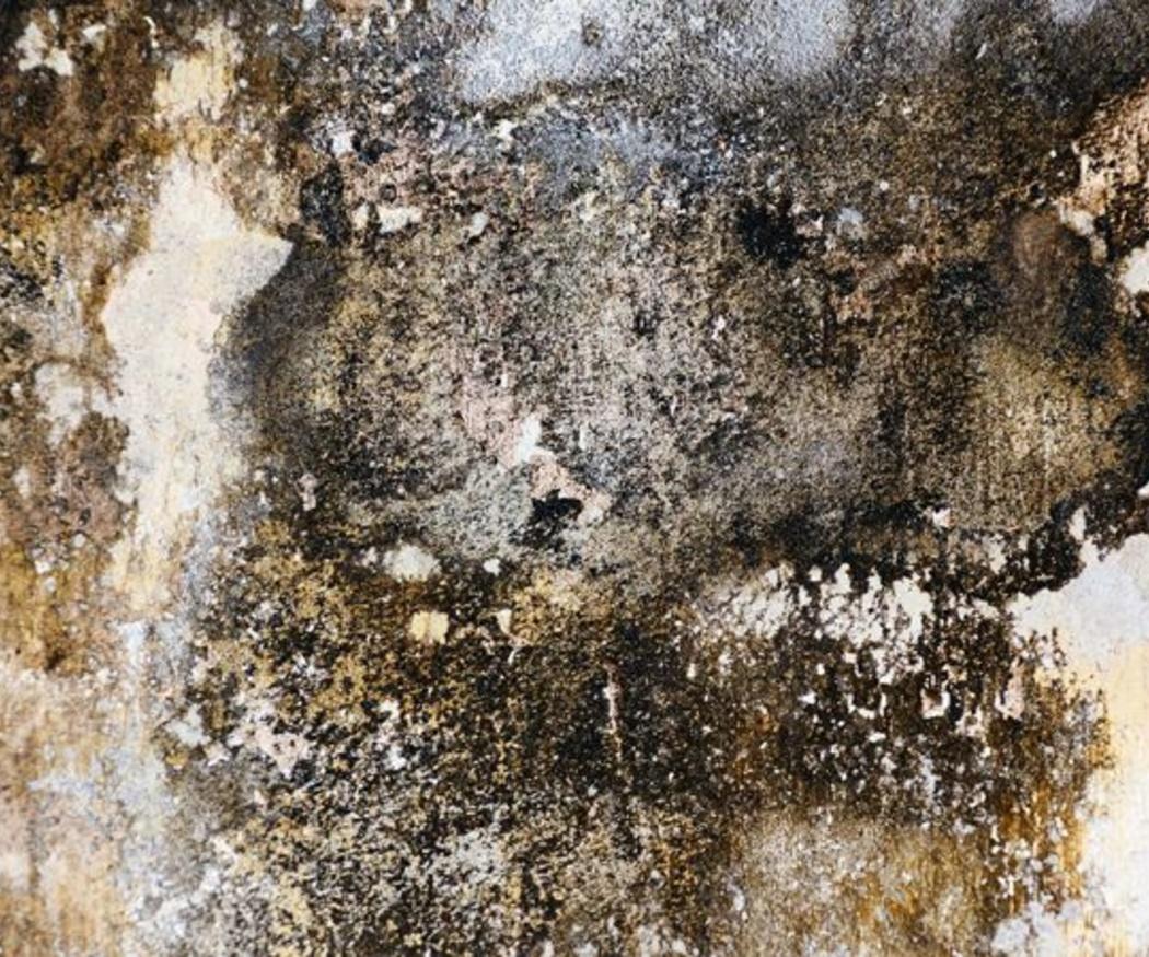 Humedades en las paredes: cómo detectarlas y eliminarlas