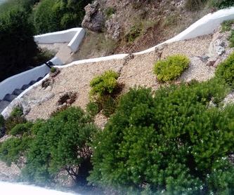 Albañilería: Servicios profesionales de Lluis Saurina Reformas Integrales