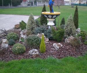 Construcción, diseño y decoración de jardines