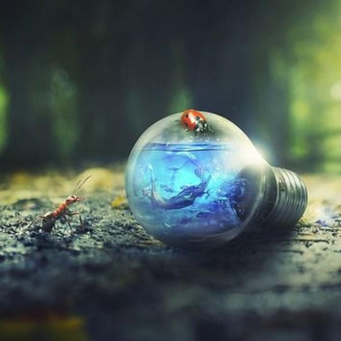 ¿Qué es un certificado energético y para qué sirve?