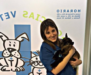 Veterinarios en Zaragoza | Urgencias Veterinarias Zaragoza