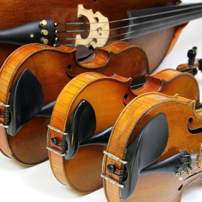 Violín, viola, violonchelo y contrabajo: ¿quién es quién?