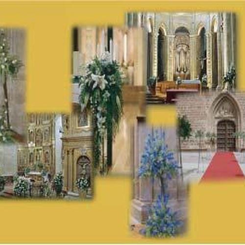 Floristerías en Santo Domingo de la Calzada | Floristería Mª Teresa