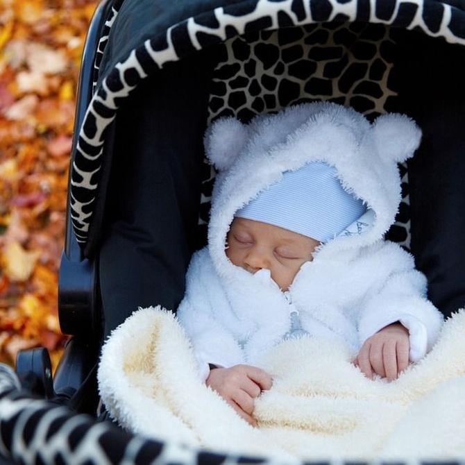 Consejos para comprar el carrito del bebé