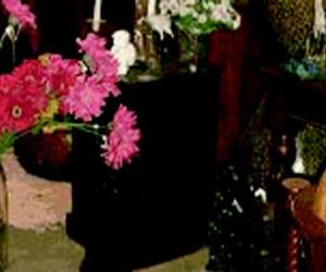 Galería de Floristerías en Puertollano   Díaz Floristas
