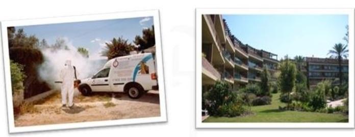 Higienisa | Empresas de desinfección Alicante