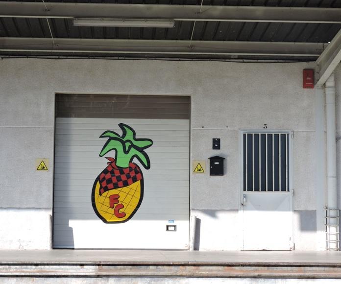 Frutería Mercazaragoza: Catálogo de Frutas Cester