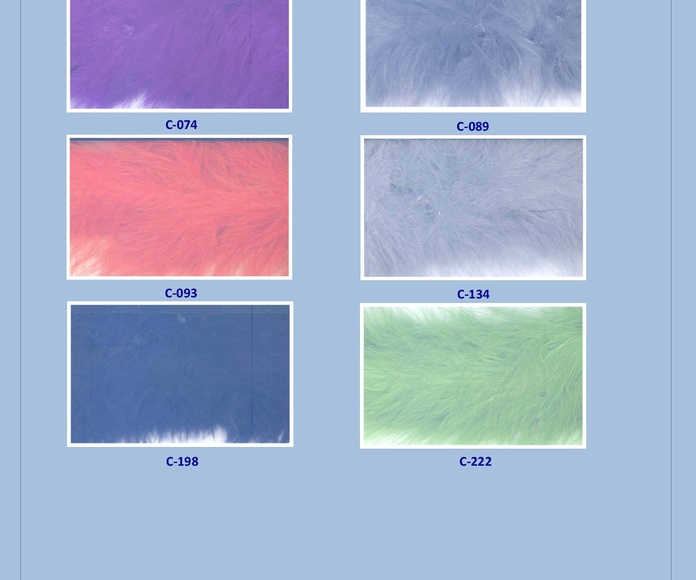 Plumas: Catálogo de Punto & Costura