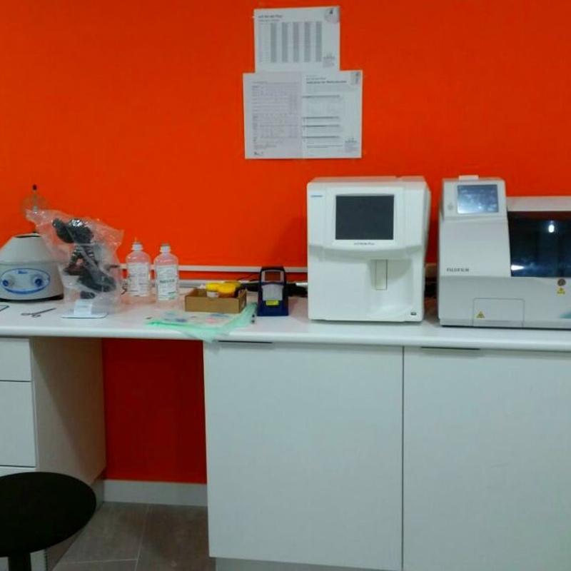 Análisis clínicos: Productos y servicios de Clínica Veterinaria Boavet