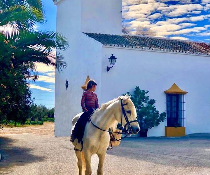 Fincas y haciendas de alquiler para bodas y eventos en Sevilla
