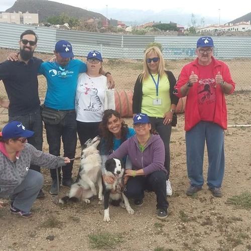 Entrenamiento de perros en Tenerife