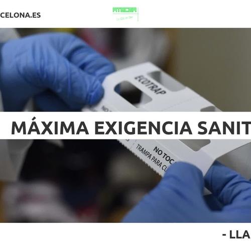 Fumigació i control de plagues a Barcelona | Atecma Barcelona