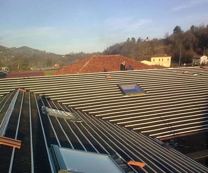 Naves industriales: Reformas y rehabilitación de Molina Construcciones