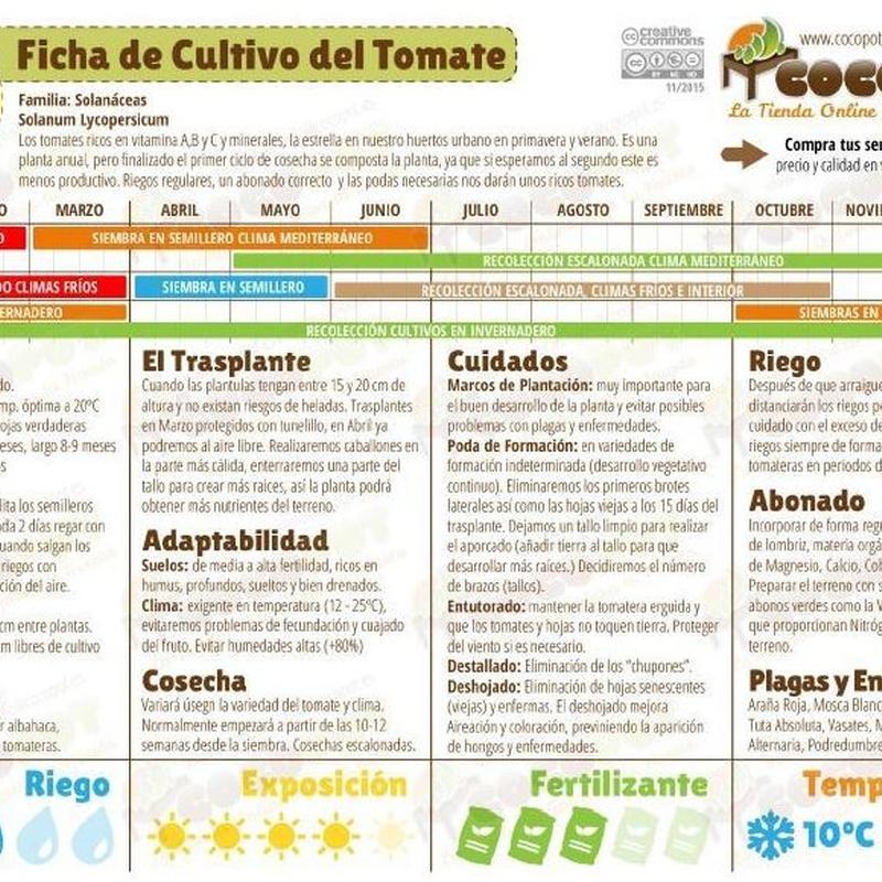 Fichas de Cultivo en Huerta:  de Huertos Azor