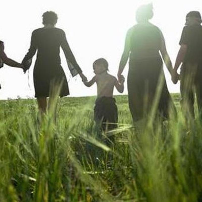 Abogaymedia divorcios centro Madrid