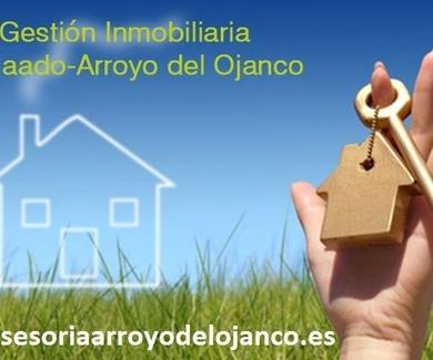 INMOBILIARIA ARROYO DEL OJANCO