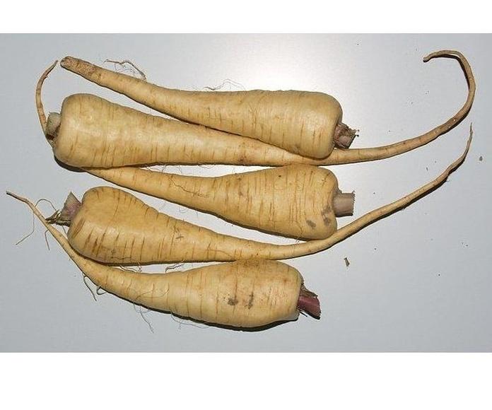 Chirivías: Productos de Mundifruit