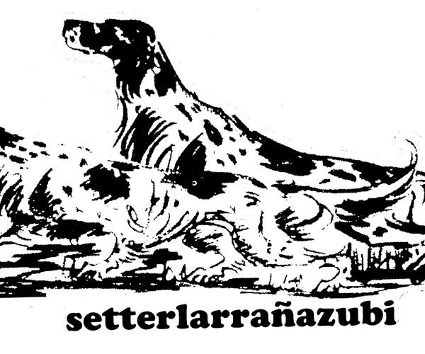 Hotel para perros en Getxo - Residencia Hotel Canino Larranazubi