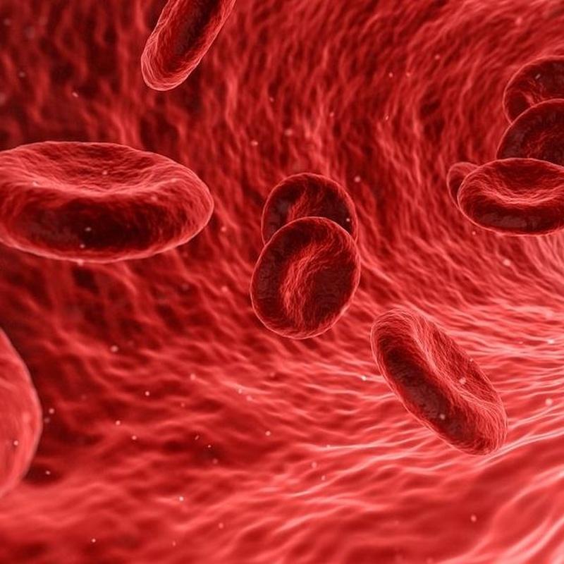 Analisis de Hepatitis
