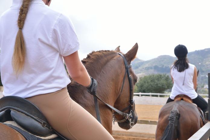 Clases de equitación: Servicios de Centro Hípico San Mateo