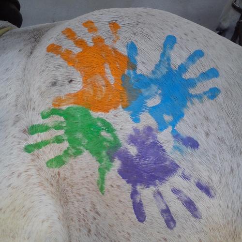 L@S BUIMIRAS! Nuestr@s niñ@s han formado un grupo en la hípica y se hacen llamar L@S BUIMIRAS!!