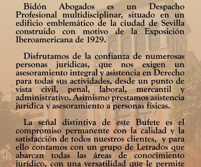 PRESENTACIÓN BREVE BIDÓN ABOGADOS