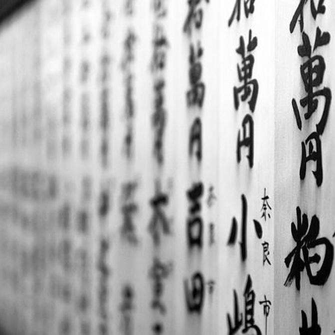 ¿Qué son los paneles japoneses y qué ventajas ofrecen?