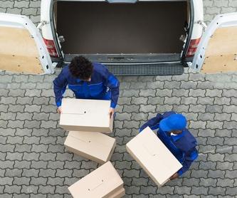 Mudanzas de empresa y oficina: Servicios  de Mudanzas Geno