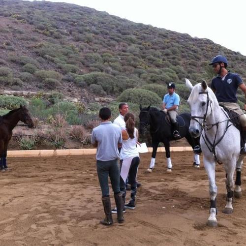 Hipovet, clases de equitación en Telde (Las Palmas)