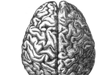 Neuropsicología